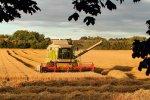 prace rolne